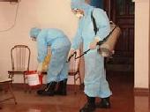 Để phòng bệnh sốt xuất huyết hiệu quả